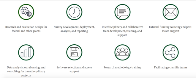 a list of the services that the Institute for Research in the Social Sciences offers
