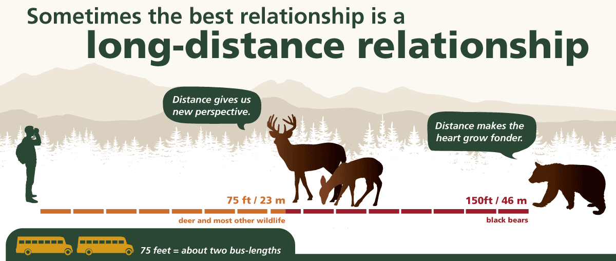 Long-distance relationship graphic