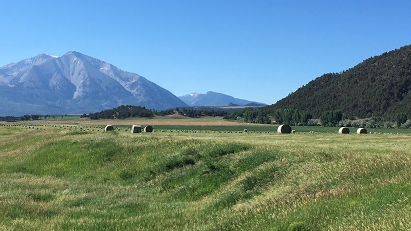 Hay fields at Crystal River Ranch in Carbondale, CO.