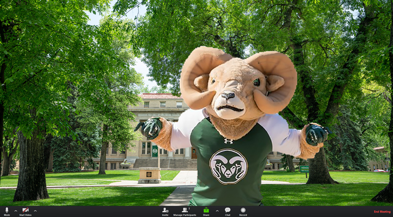 CAM photoshopped on top of a virtual background of the CSU Oval